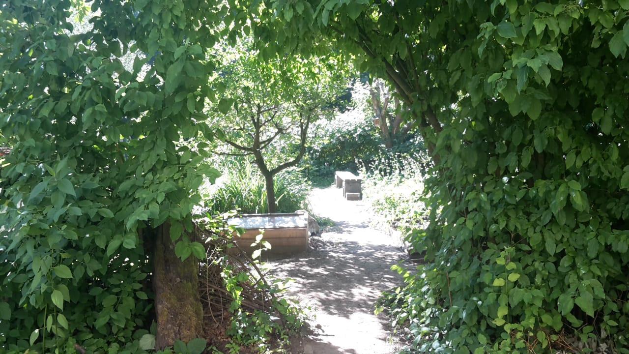Eingang in den Schulgarten