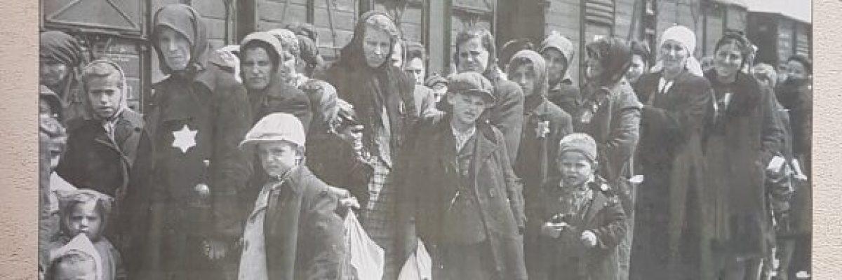 Auschwitz_Ausstellung